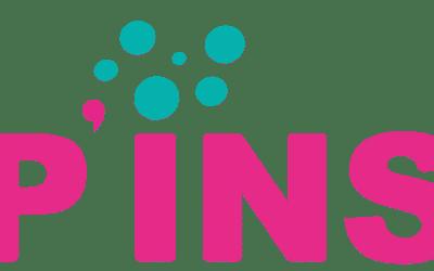 Appel à projet sur les innovations sociales (P'INS)